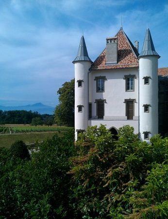 Castel elvetian cauta printesa si print