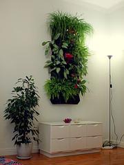 Living Wall@mannewaar