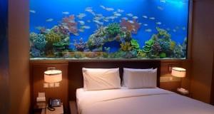 Trend in amenajare: dormitoare cu acvariu