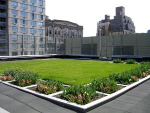 acoperisurile verzi urbane