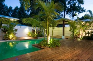 design piscine tropical