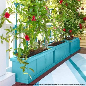 jardiniere albastre