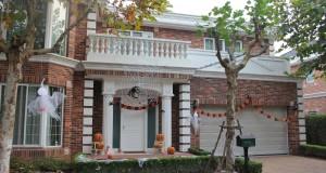 Decoratiuni de Halloween pentru casa si gradina