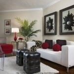 small-living-room-design-ideas-black-and-white-furniture-red-accents
